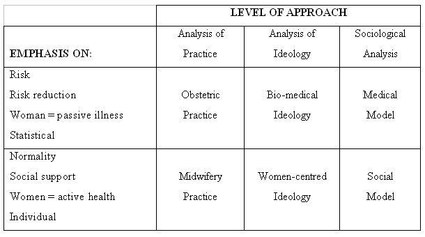 medical model essay